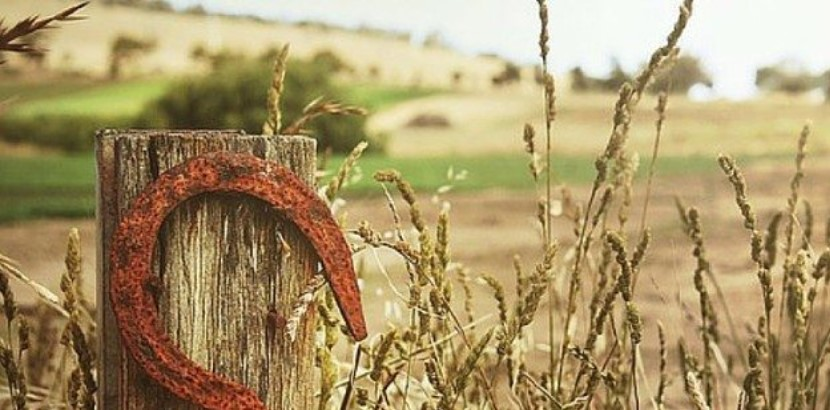 Prairie scene with a horse shoe hanging on a fence post