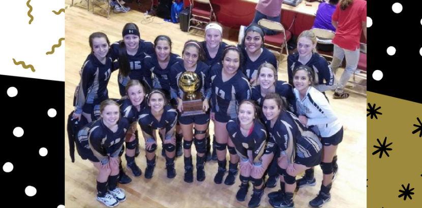 Volleyball Crowned Bi-District Champs