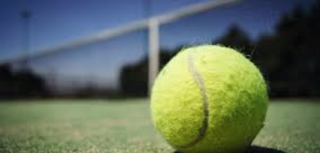 AHS Tennis Team Wins AREA CHAMPIONSHIP