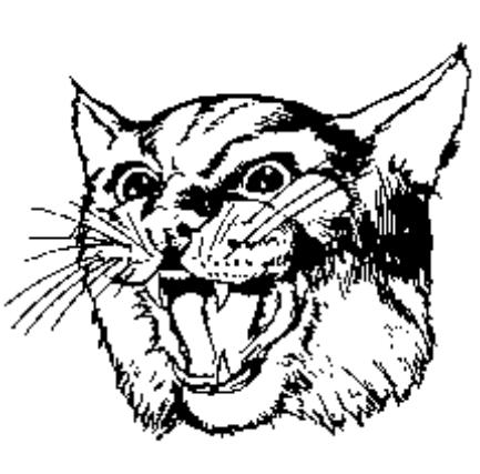 Wildcat Academy at CMS