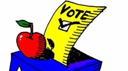 Vote cartoon box