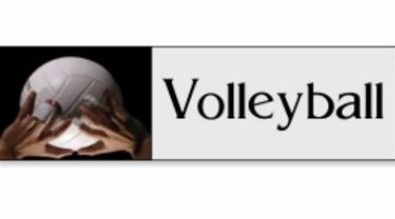 Volleyball Team logo