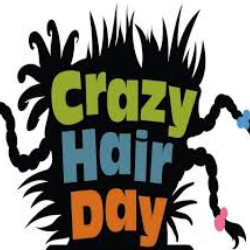 Crazy Hair Day image