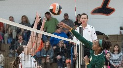 Photo of Girls Volleyball Game