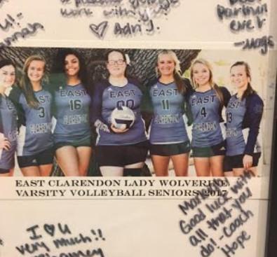 Varsity Volleyball Girls 2017-2018