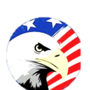 Photo of an eagle with the American Flag