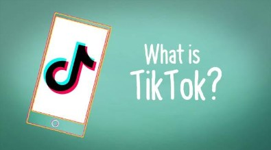 Click to watch overview video of TikTok app