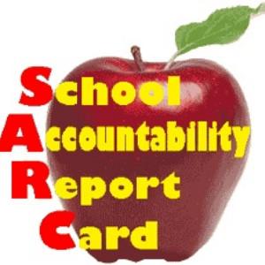 API & SARC Reports