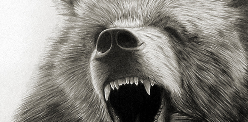 """Photo of a grizzly bear with the text """"Home of the grizzlies"""""""