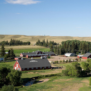 Aerial photo of the Hereford Ranch.
