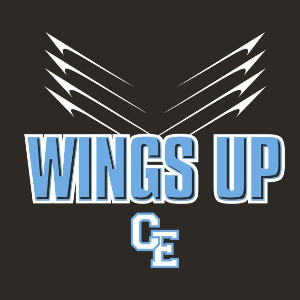 Wings Up graphic