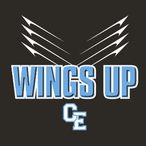 2019-20 Wings Up logo