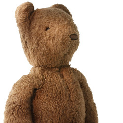 Teddy Numbers