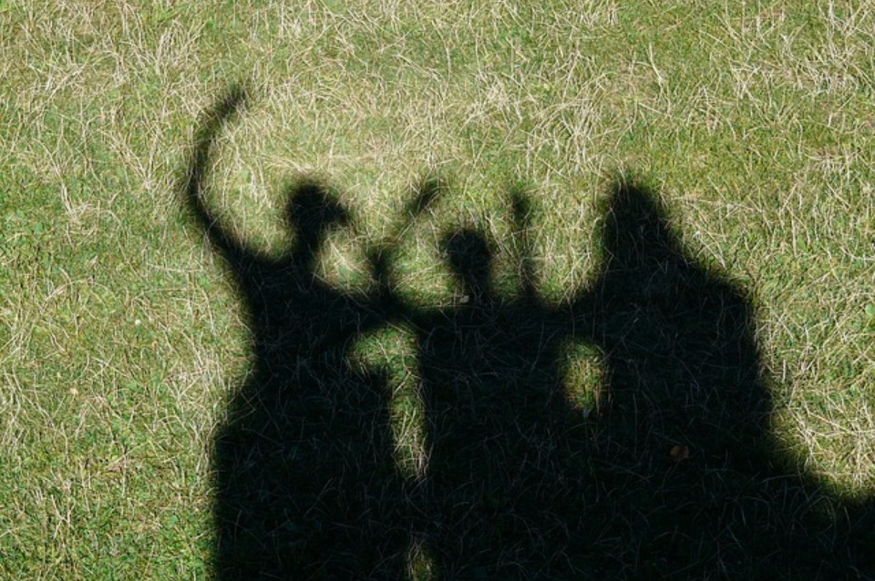 Shadow of students in the grass