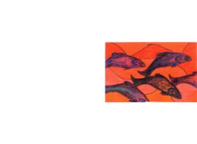 drawing of fish jumping