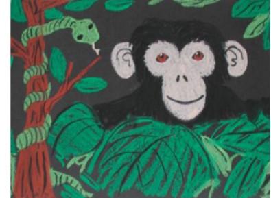 drawing of a chimpanzee