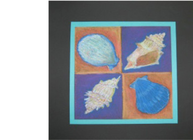 pastel drawing of shells