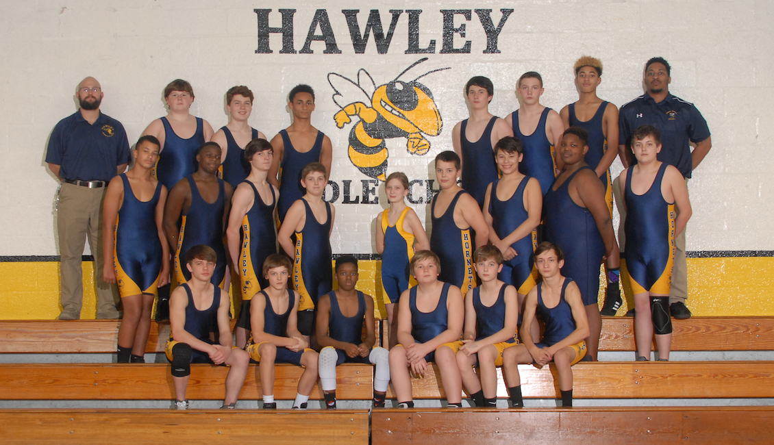 Welcome to Hawley Hornets Wrestling!