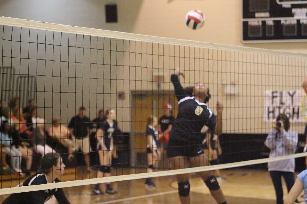 Lady Golden Bear Volleyball