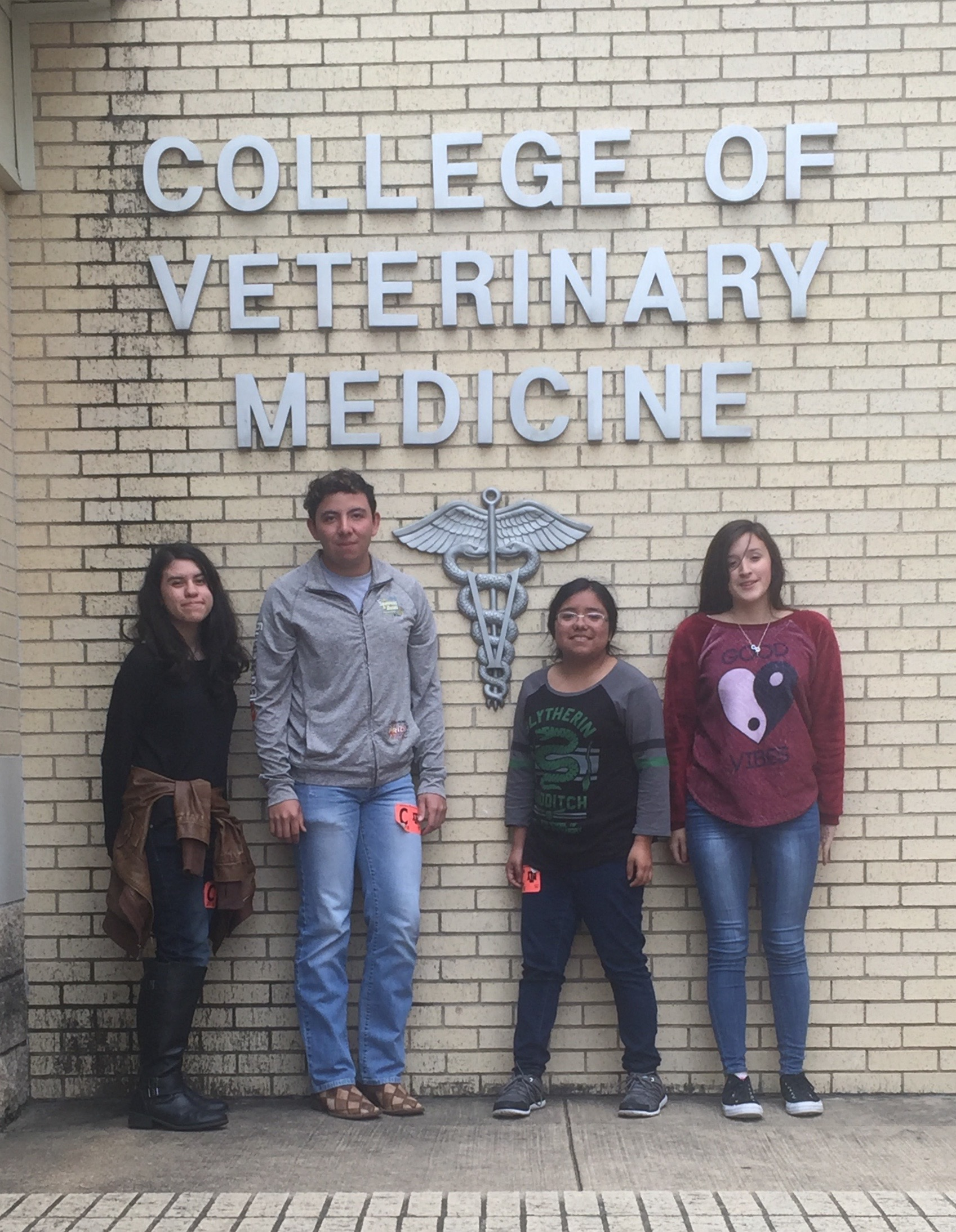 Texas A&M Vet Tech Clinic