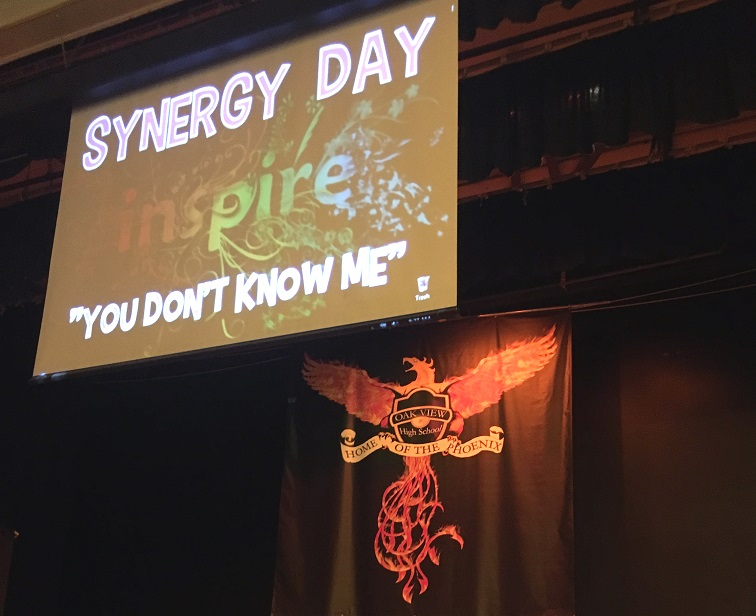 Synergy Day