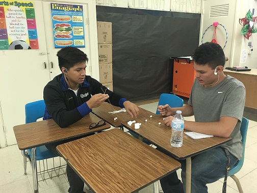 Teamwork in Mrs. Schmidt's Class