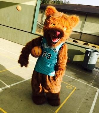 DHMS Mascot