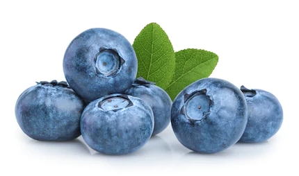 Blueberry Pickers Needed 2-3 days/week @ $11/hr