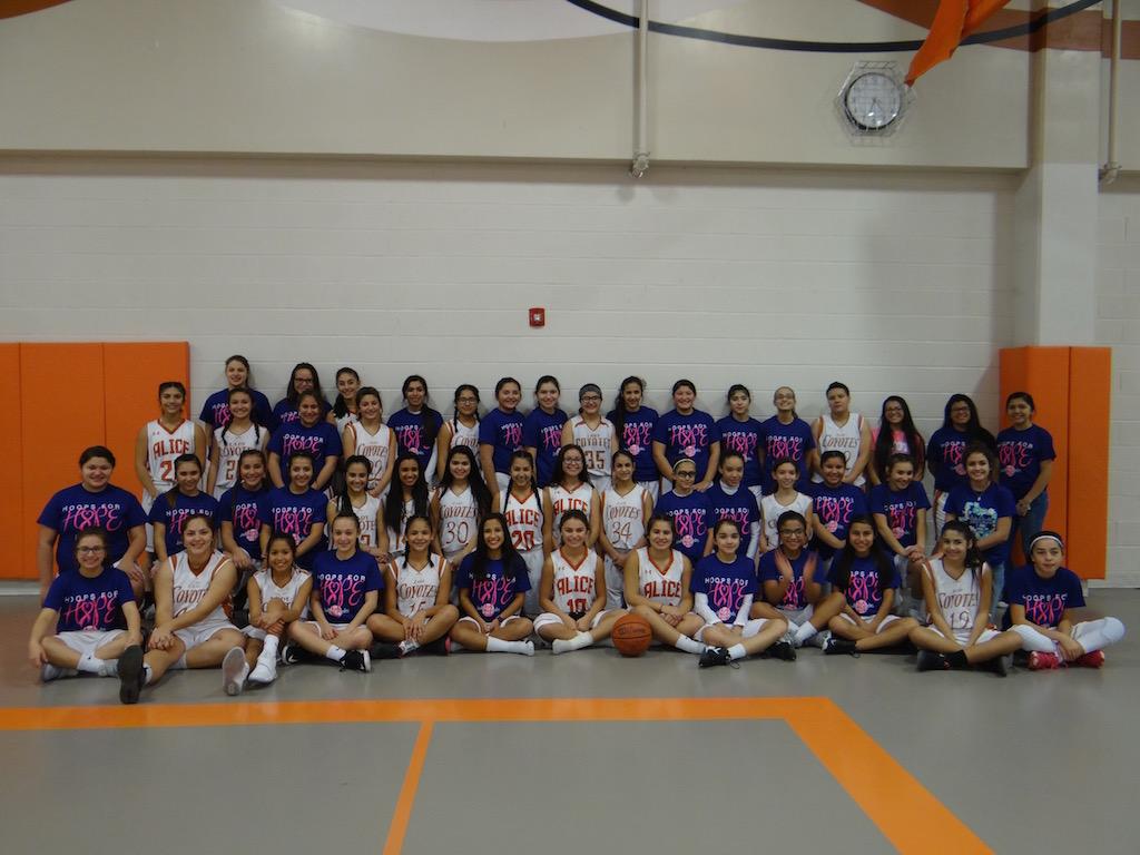 2017 Girls Basketball Teams