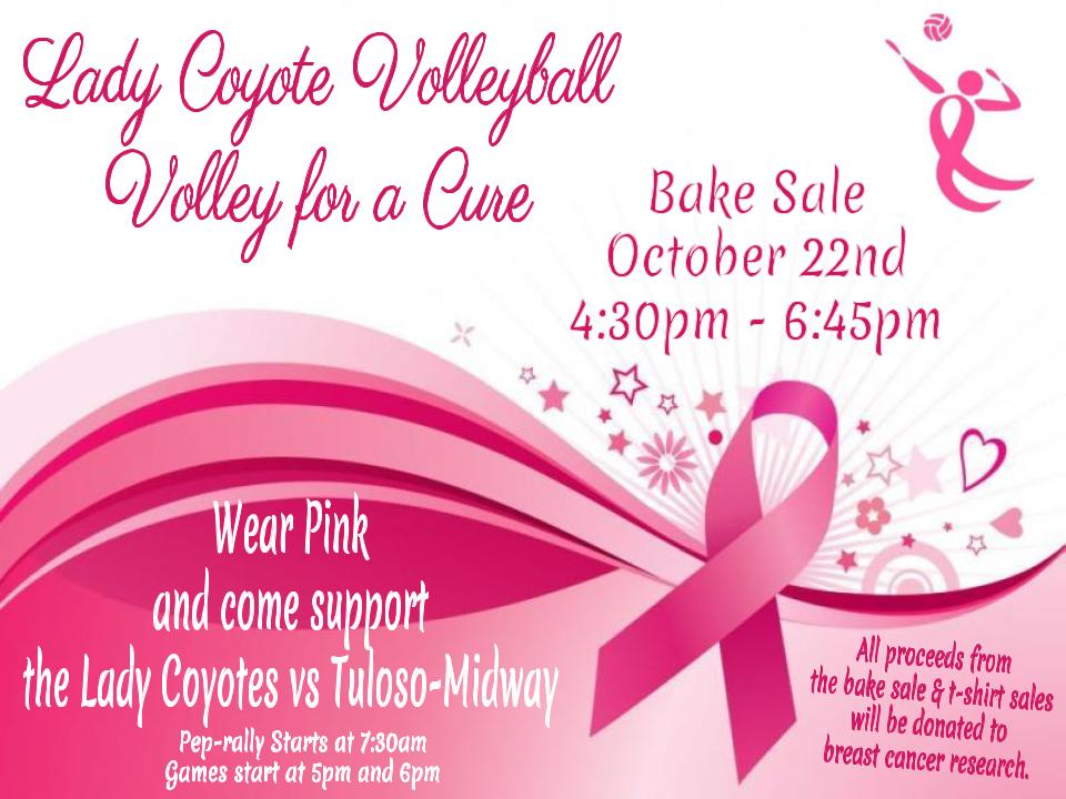 Volley for a Cure