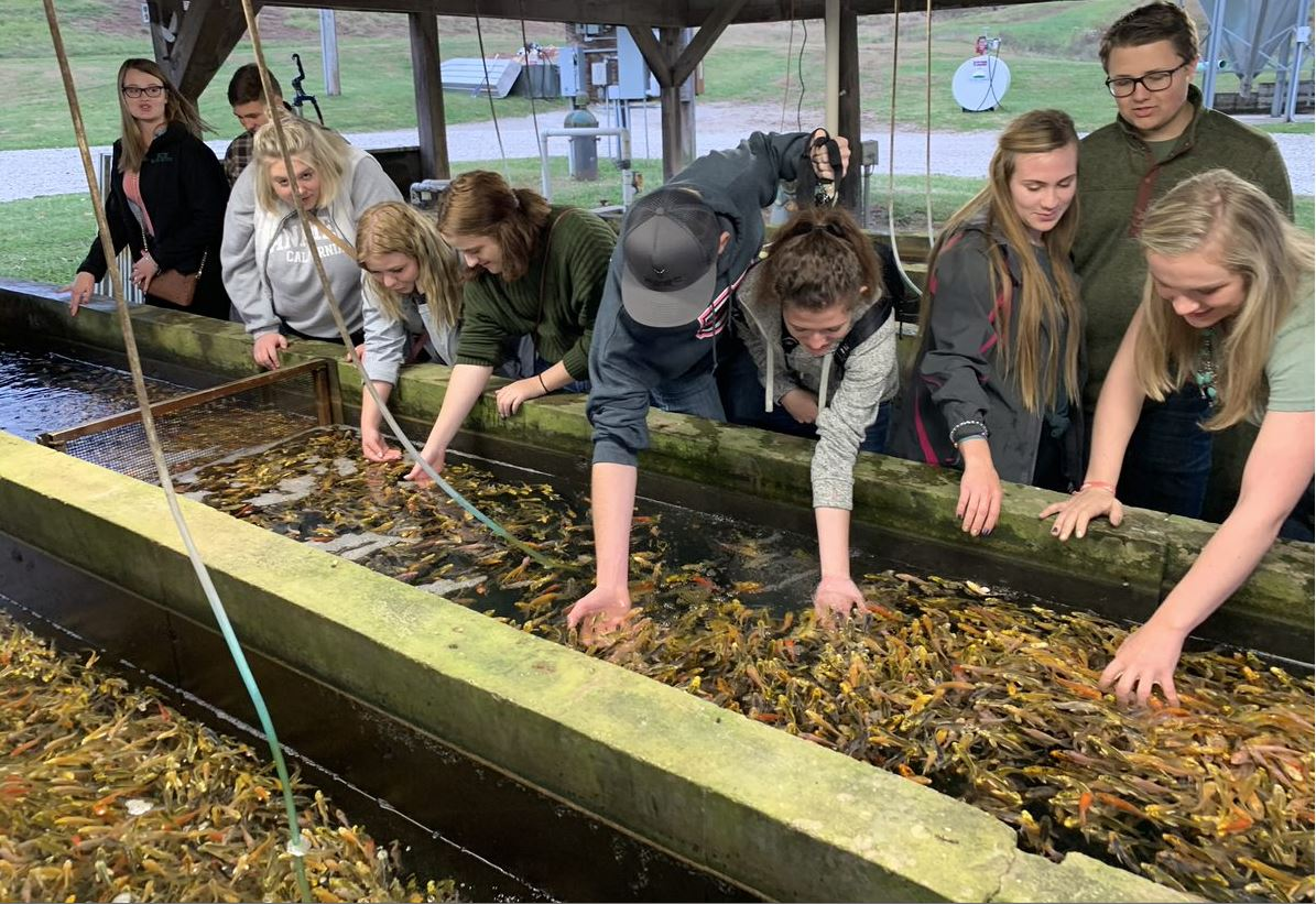 Frontier FFA visits a Koi hatchery