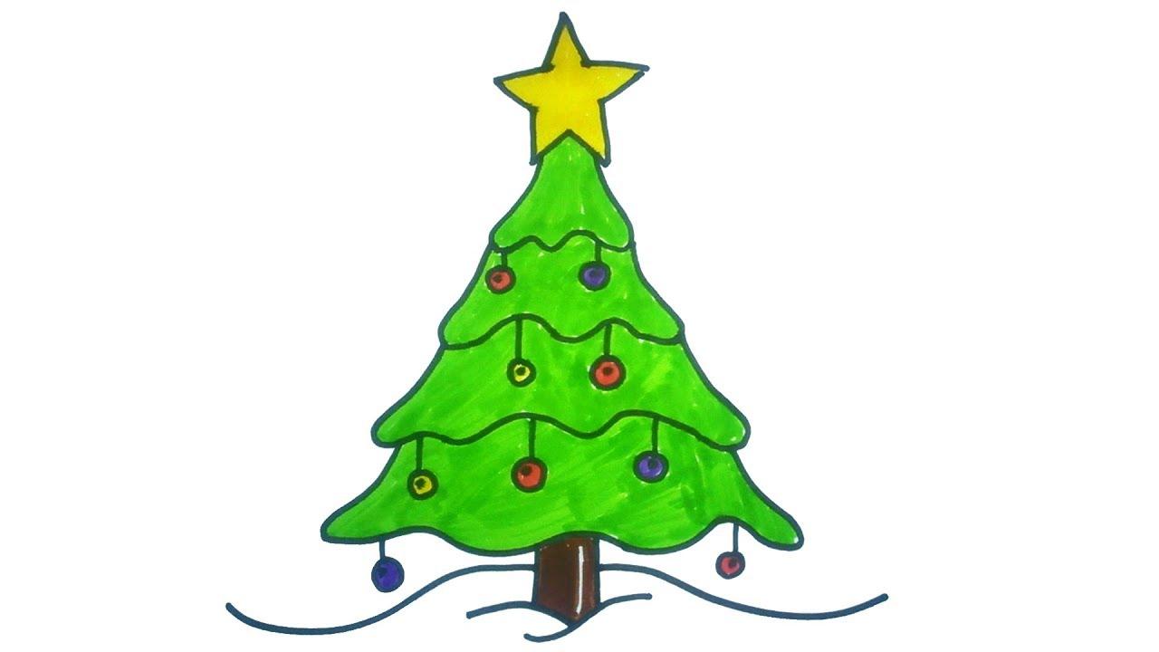 Fresh Cut Christmas Trees for Sale!