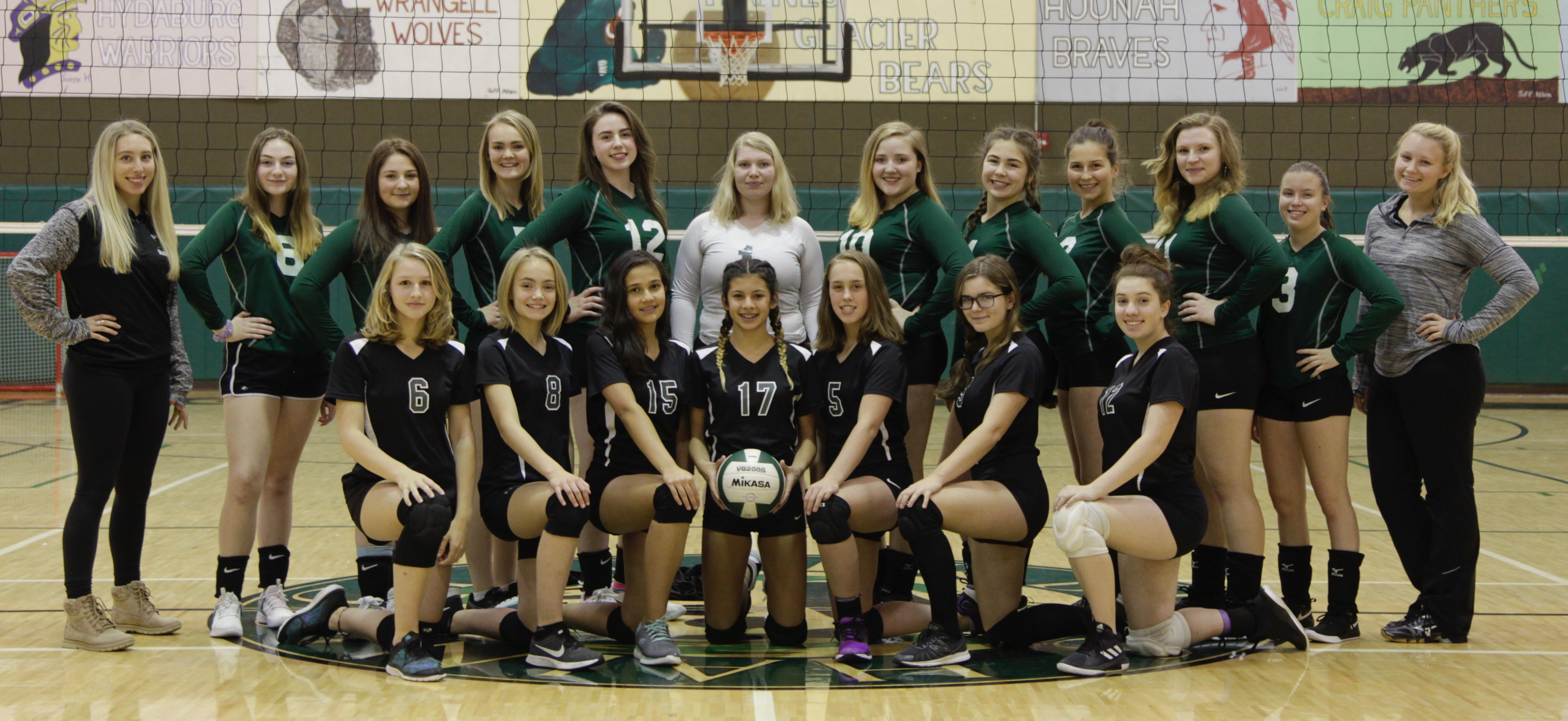 2018-2019 Volleyball