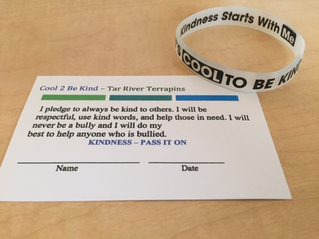 Bracelet and Pledge Card