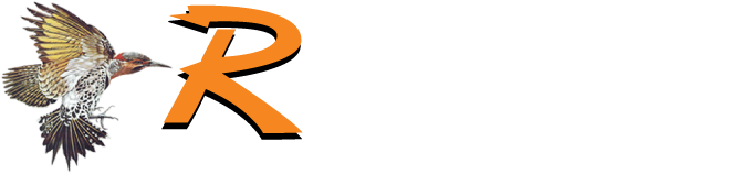 Rotan Independent School District
