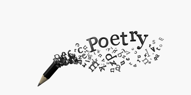 Ms. Bregoli - Poetry Project