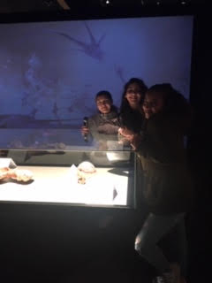 Museam of Science Field Trip