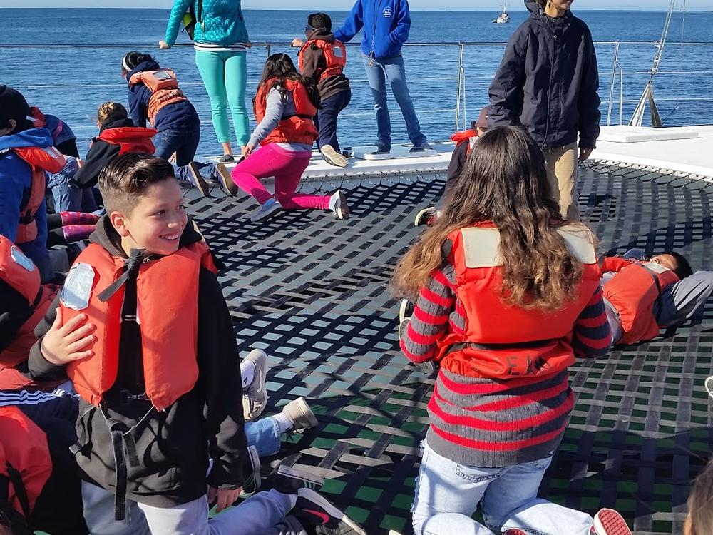 Oneill Sea Odyssey