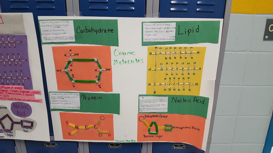 Organic Molecule Projects